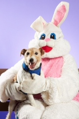 Second Chance Easter Pets
